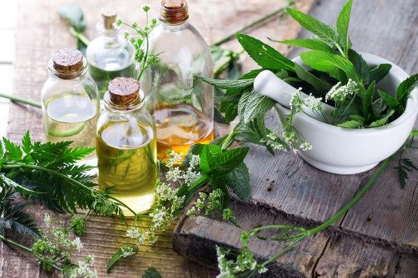 Травы и масла для восстановления упругости груди