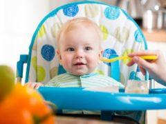 Питание 8-месячного ребенка на искусственном вскармливании