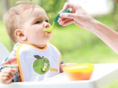 Педагогический прикорм: воспитание ребенка и его родителей