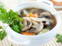 Совместимо ли грудное вскармливание и грибной суп